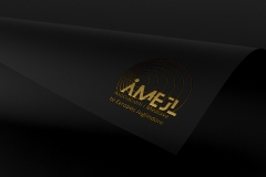 Customizable Foil Logo Mockup by Anthony Boyd Graphics