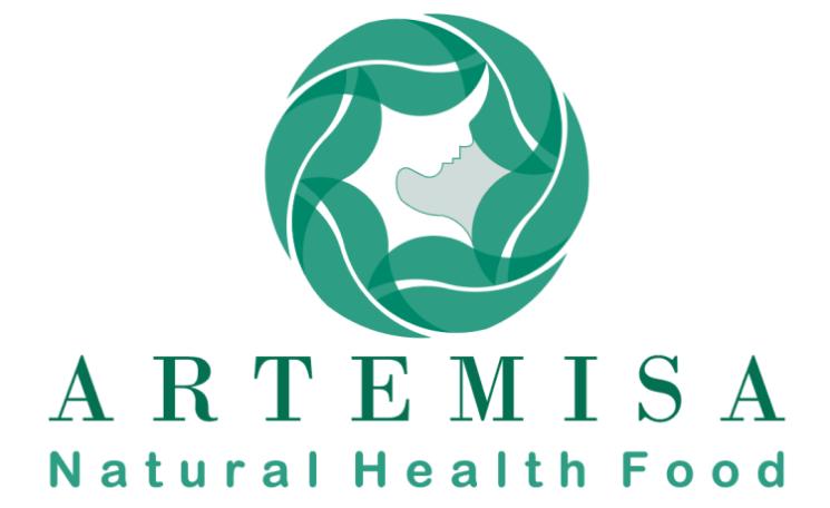 """Cele mai bune soluții pentru proiectul Artemisa – material publicitar"""""""